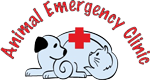 Animal Emergency Clinic